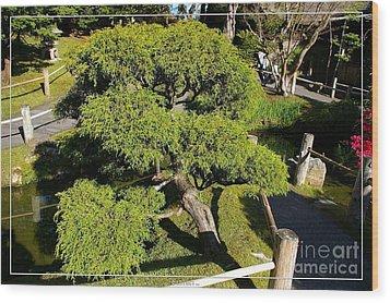 San Francisco Golden Gate Park Japanese Tea Garden 3 Wood Print by Robert Santuci