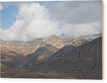 The San Gabriels Wood Print by Gilbert Artiaga