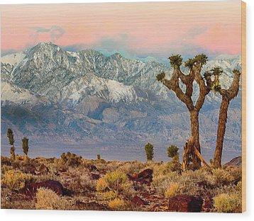 San Gorgonio Mountain From Joshua Tree National Park Wood Print by Bob and Nadine Johnston