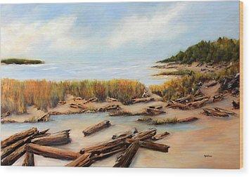 San Juan Islands Wood Print by Marti Green