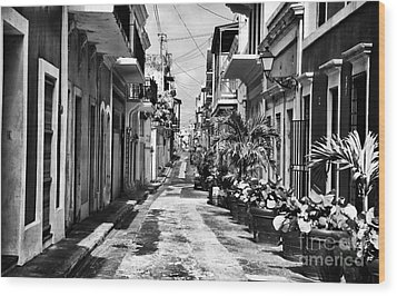 San Juan Street Plants Wood Print by John Rizzuto