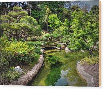 San Marino - Huntington Botanical Gardens 004 Wood Print by Lance Vaughn
