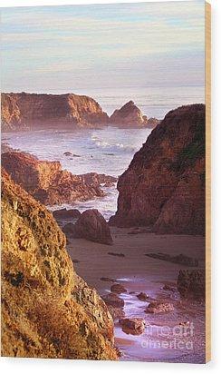 San Simeon Coastal View Wood Print by Michael Rock