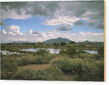 San Tan Wide Wood Print by George Lenz