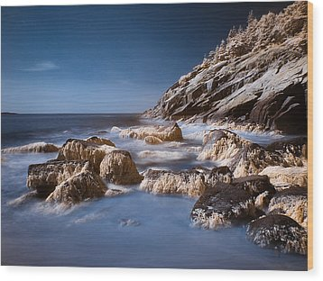 Wood Print featuring the photograph Sand Beach by Steve Zimic