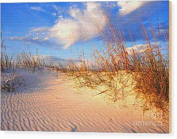 Sand Dune And Sea Oats At Sunset Wood Print by Thomas R Fletcher