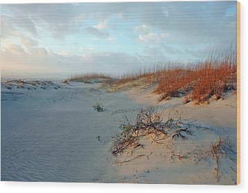 Wood Print featuring the photograph Sand Dune On Tybee Island by Allen Carroll