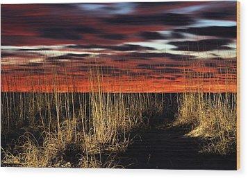 Sand Dune Sunrise Wood Print by JC Findley