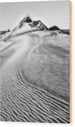 Sand Dune Textures - Outer Banks II Wood Print by Dan Carmichael