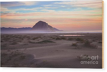 Sand Dunes At Sunset At Morro Bay Beach Shoreline  Wood Print
