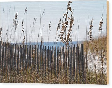 Wood Print featuring the photograph Sand Dunes by Michele Kaiser