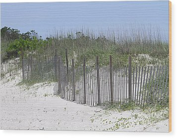 Sand Fence At Cape Lookout Wood Print by Cathy Lindsey