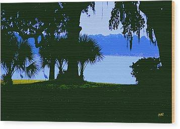 Sand Hill Cranes On Shore Wood Print