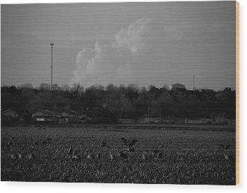 Sand Hill Cranes With Nebraska Thunderstorm Wood Print