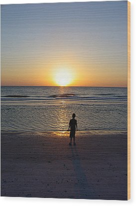 Wood Print featuring the photograph Sand Key Sunset by David Nicholls