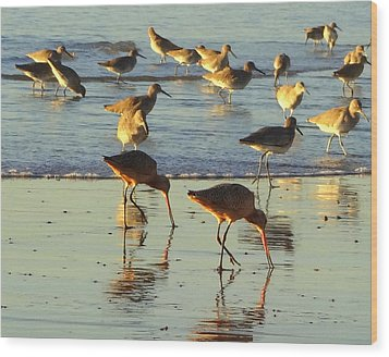 Sand Pipers Wood Print