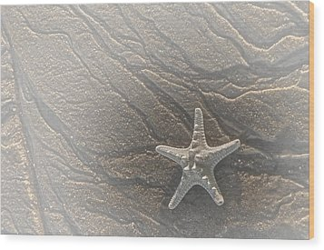 Sand Prints And Starfish II Wood Print by Susan Candelario