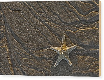 Sand Prints And Starfish  Wood Print by Susan Candelario
