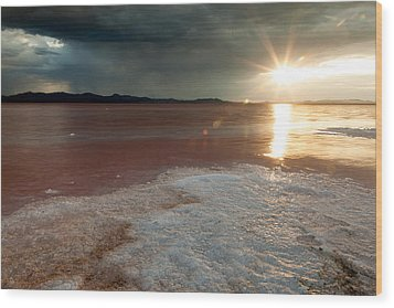 Sand Salt And Sunshine Wood Print by Darryl Wilkinson