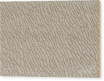 Sand Skin Wood Print by Artist and Photographer Laura Wrede