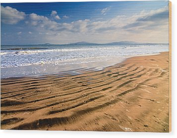 Sand Waves Wood Print by Evgeni Dinev