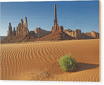 Wood Print featuring the photograph Sand Waves by Paul Miller