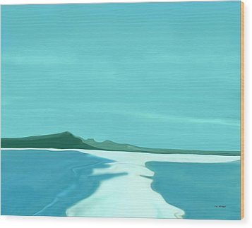 Sandbar Wood Print by Tim Stringer