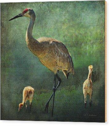 Sandhill And Chicks Wood Print by Barbara Chichester