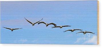 Sandhill Crane Flight Pattern Wood Print by Mike Dawson