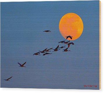 Sandhill Crane Migration Wood Print by Julie Dant