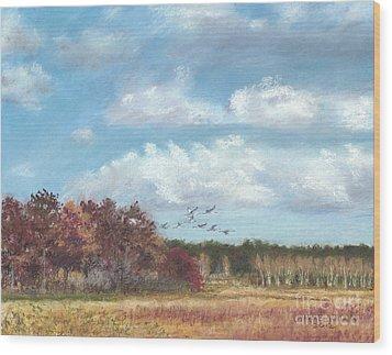 Sandhill Cranes At Crex With Birch  Wood Print by Jymme Golden