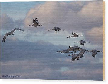 Sandhill Cranes Wood Print by Beverly Parks