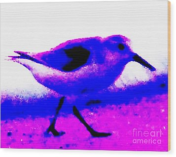 Sandpiper Abstract Wood Print by Eric  Schiabor