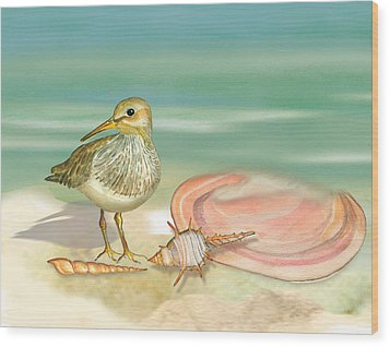 Sandpiper On Beach Wood Print
