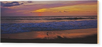 Wood Print featuring the photograph Sandpiper On The Beach by John Harding