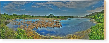 Sandpiper Pond Panorama Wood Print by Ed Roberts