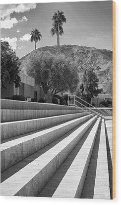 Sandpiper Stairs Bw Palm Desert Wood Print by William Dey