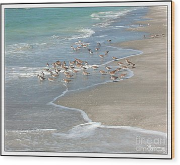Sandpipers On The Beach Wood Print