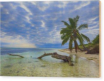 Sandspur Beach Wood Print by Swank Photography