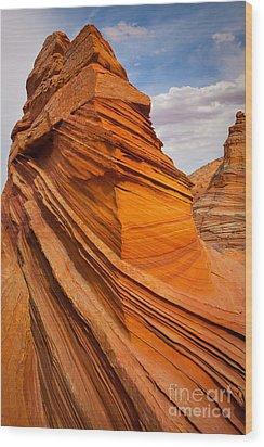 Sandstone Flatiron Wood Print by Inge Johnsson