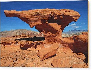 Sandstone Landscape Wood Print by Bob Christopher