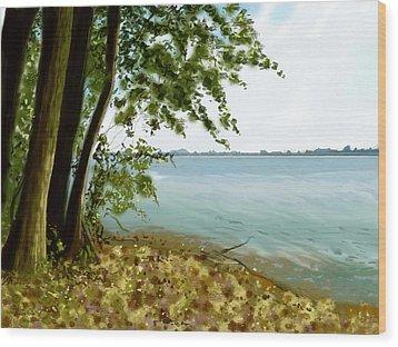Wood Print featuring the painting Sandusky Bay by Shawna Rowe