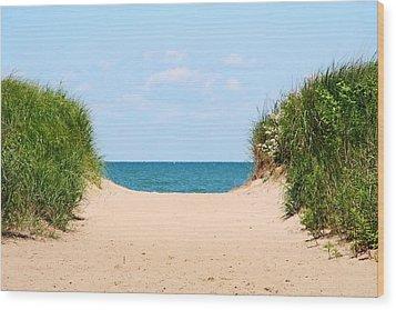 Sandy Beach Wood Print by Heather Allen