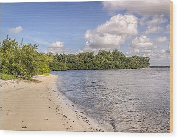 Wood Print featuring the photograph Sandy Beach by Jane Luxton