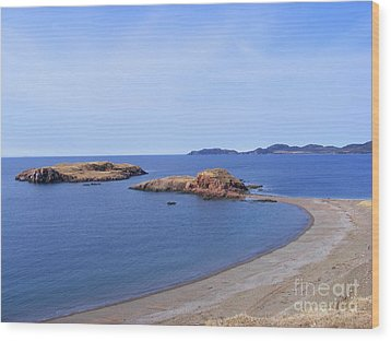 Sandy Beach - Little Island - Coastline - Seascape  Wood Print by Barbara Griffin