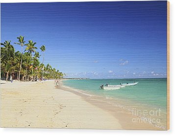 Sandy Beach On Caribbean Resort  Wood Print by Elena Elisseeva
