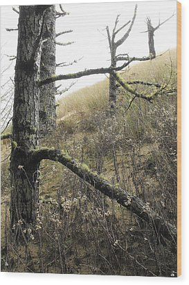 Wood Print featuring the photograph Sandy Hillside by Adria Trail