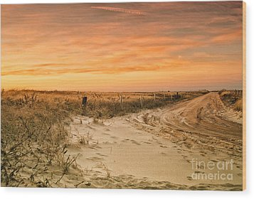 Sandy Road Leading To The Beach Wood Print