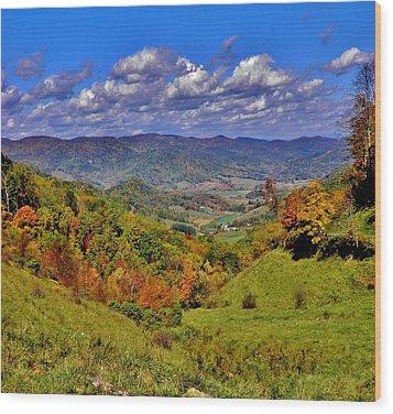 Sandymush Valley Wood Print