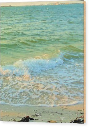 Wood Print featuring the photograph Sanibel At Sunset by Janette Boyd